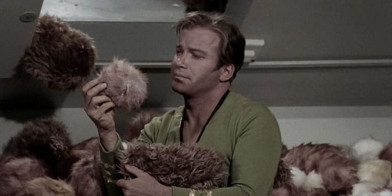 Chatbots are like Tribbles with Jobs